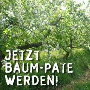 baum_1p